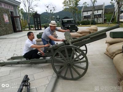 上海集运物流有限公司